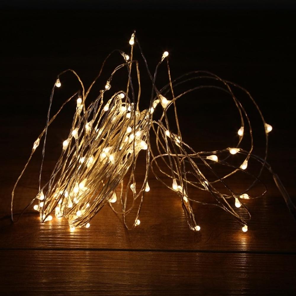 100 Led Copper Fairy Lights Warm White